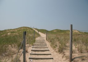 Trail over the dune to Lake Michigan