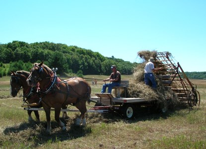 Horse-drawn Hay Loader, Port Oneida Fair 2005