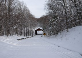 PS Drive Covered Bridge