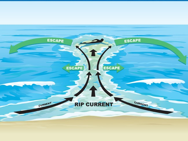 rip_current