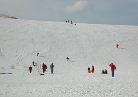 Sledding on the Dune Climb
