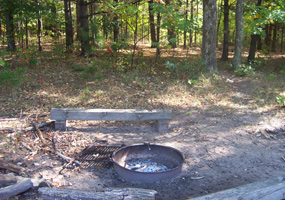 Valley View Camp Site and Fire Ring