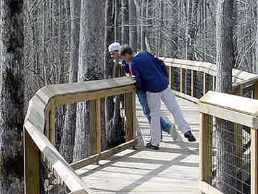 Accessible boardwalks wind through the heart of Lorance Creek Natural Area