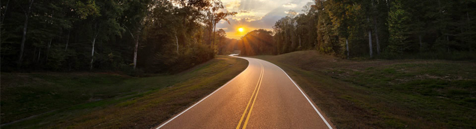 Natchez Trace Parkway, Mississippi. Photo ©Marc Muench