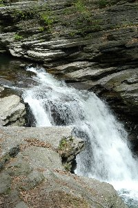 Roaring Brook tumbles over a grey shale ledge at Nay Aug Falls in Scranton, PA.
