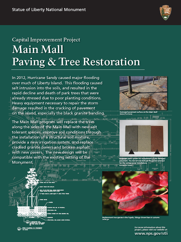 Main Mall Paving and Tree Restoration