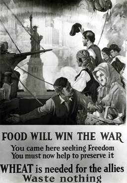 This poster asked immigrants not to waste wheat during the war.