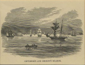 A woodcut print of Governor's and Bedloe's Island circa 1860.