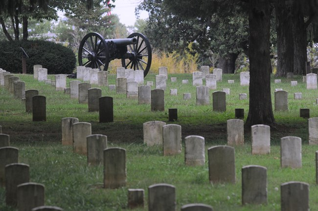 A cannon overlooks a hill with grey headstones in a cemetery