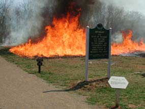 Prescribed fire behind the Michigan marker