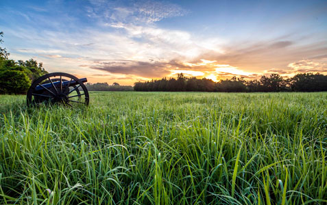 Sun rises over a field with a cannon.
