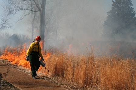 A firefighter lights a prescribed fire at Redoubt Brannan of Stones River National Battlefield.