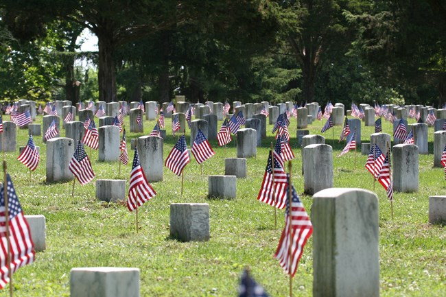 Rows of headstones in a national cemetery. Small American Flags stand in front of each headstone.