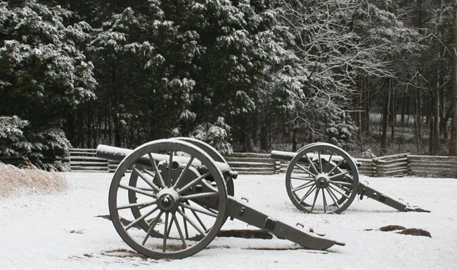 Two Cannons covered in snow in a wooded area.