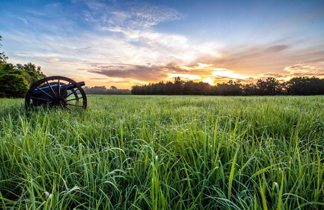 A cannon stands in a green field with the sun rising on the horizon.