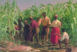 Painting of slaves working in a corn field.