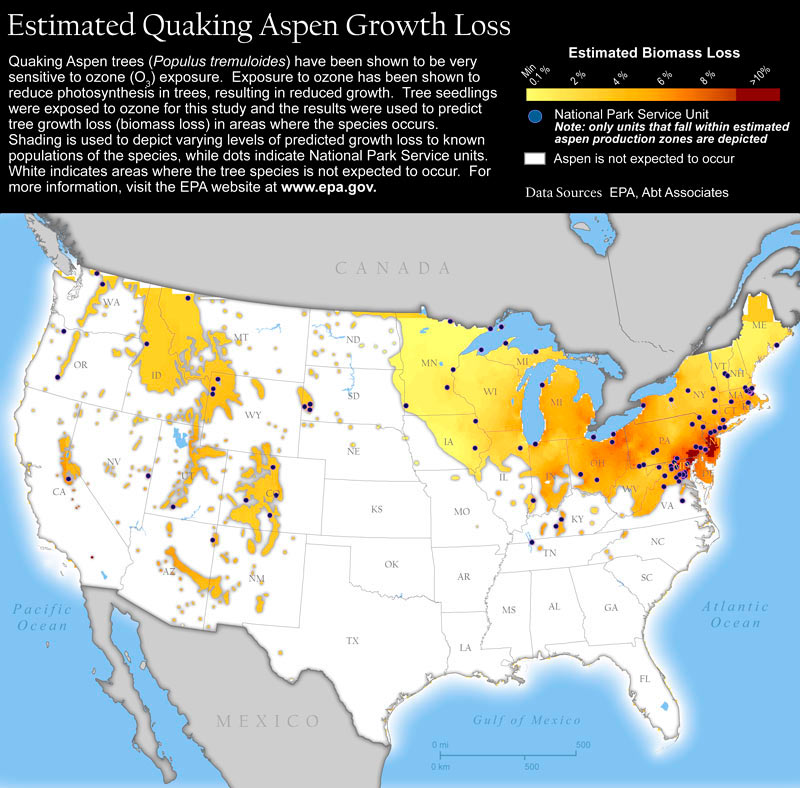 Map of the United States showing areas of growth loss for Quaking Aspen trees