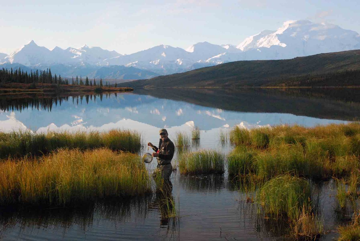 A researcher doing aquatic surveys in Denali.
