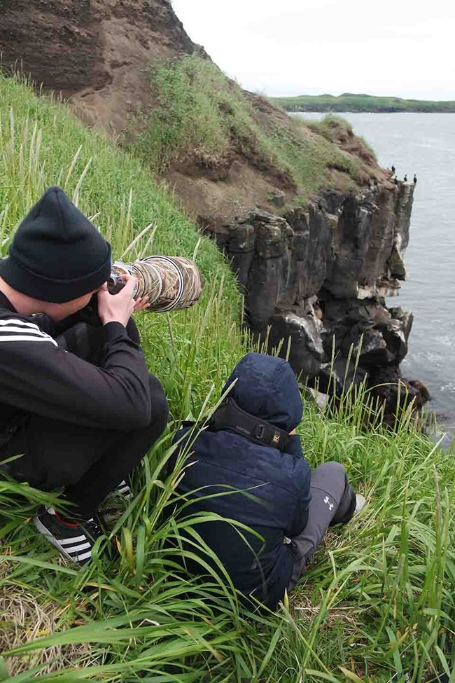 Youth taking photos of seabirds.