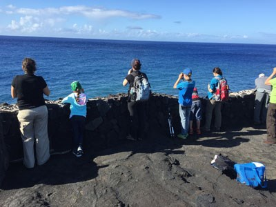 Bird inventory at the 2015 BioBlitz at Hawai'I Volcanoes National Park