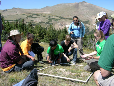 Looking for life at high elevations at the 2012 BioBlitz at Rocky Mountain National Park
