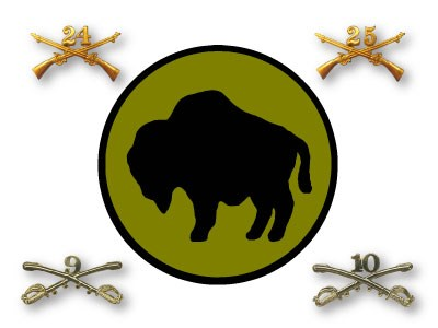 A large green circle with a buffalo drawing in the center surrounded by pins with crossed swords and guns and numbers on them