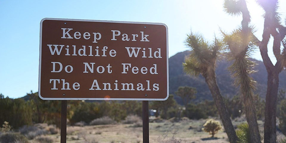 Park sign reads: Keep Park Wildlife Wild Do Not Feed The Animals
