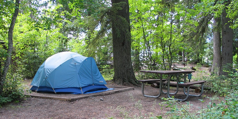 A blue tent is pitched next to a picnic table in a campground