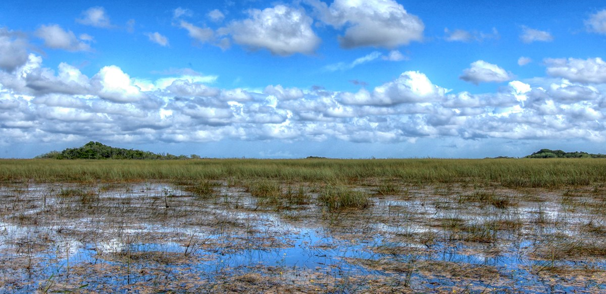 everglades national park wet season
