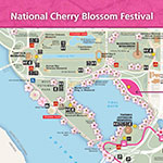 Cherry Blossom Map Icon