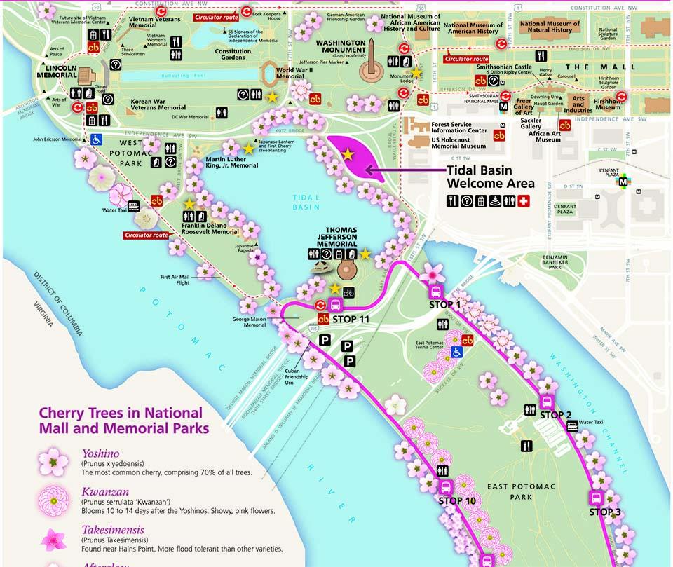 Site Map 2018: Cherry Blossom Festival (U.S. National Park Service