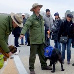 Ranger dog tour