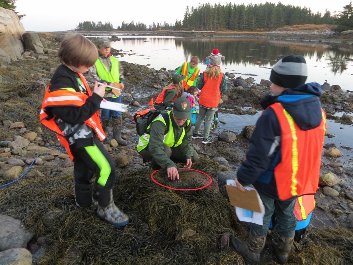 A ranger and kids examine an intertidal rock