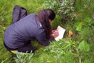 A woman kneels in vegetation and takes notes on a pad of paper