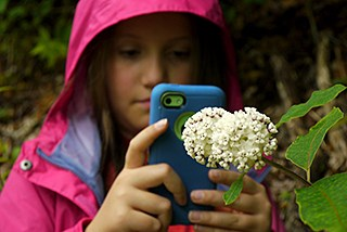 A youth take a picture of a flower with a smartphone