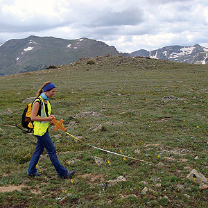 Intern laying out tape measure in alpine environment