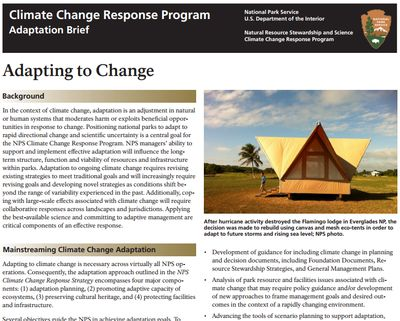Climate change program brief thumbnail