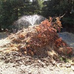 A spray of water wets a compost pile.