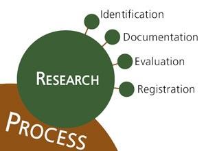 Branching diagram shows elements of research
