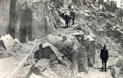 Two men and a mule stand on a steep and rocky trail