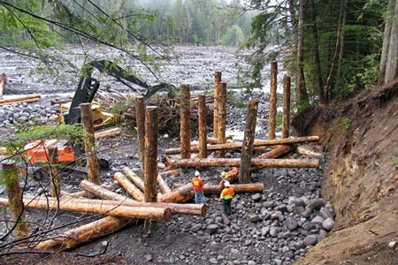 Workers use machinery to engineer a log structure near a river embankment