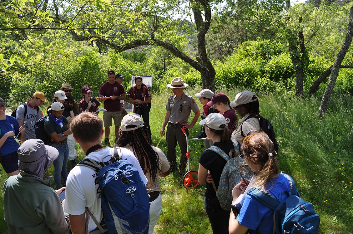 The 2017 Designing the Parks team gathers under a tree to learn from park resource management staff.