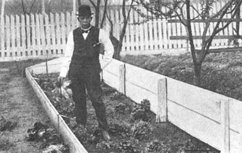 A man in a bowler hat, vest, and bowtie holds a head of lettuce in a garden bed surrounded by a fence.
