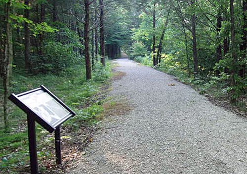 An interpretive wayside stands beside a straight gravel trail through a wooded area