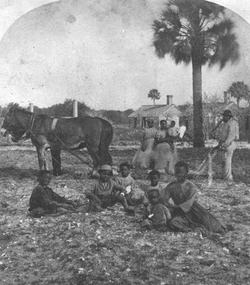 A group of African American children sit on the ground near a team of horses.