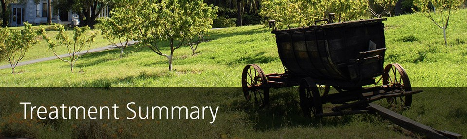 """Treatment Summary"" - A wooden wagon sits in a sunny orchard"
