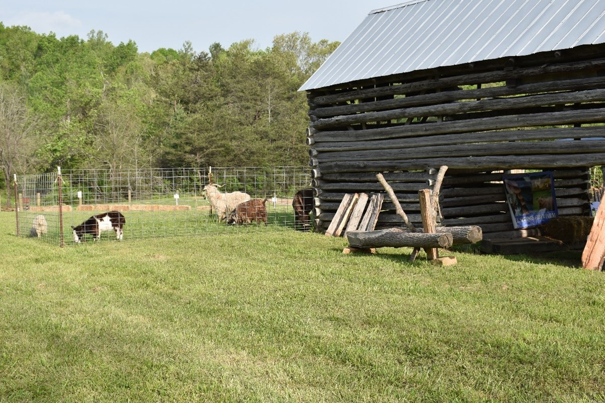 Farm animals within a fenced area beside a log barn