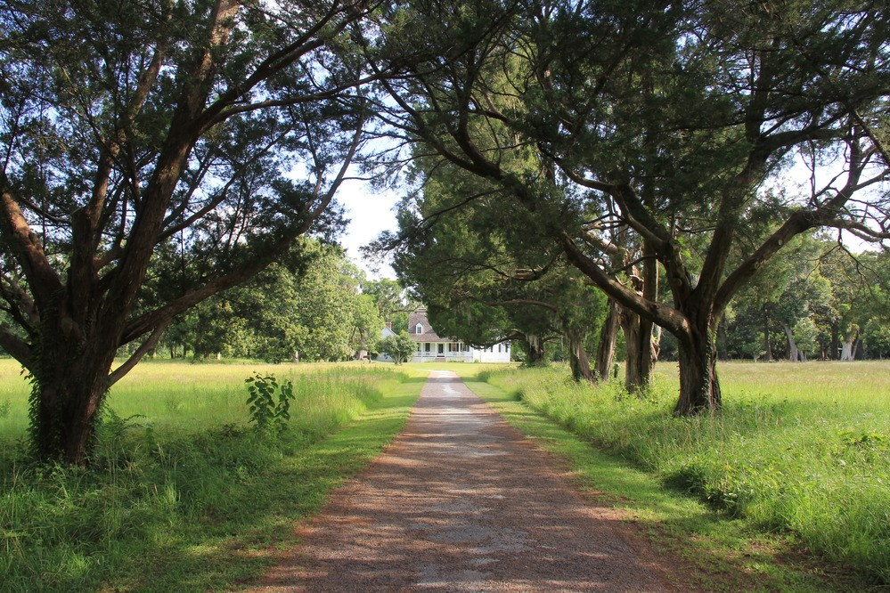 Tree-lined drive leads straight through a flat grassy field to a white house,