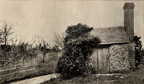 Vines grow over one half of a small brick structure with a wooden door and chimney.