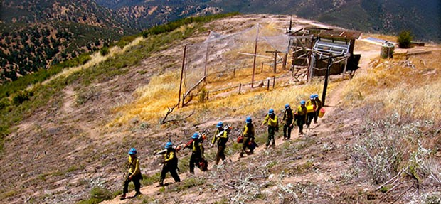 A line of firefighters hikes down a trail.